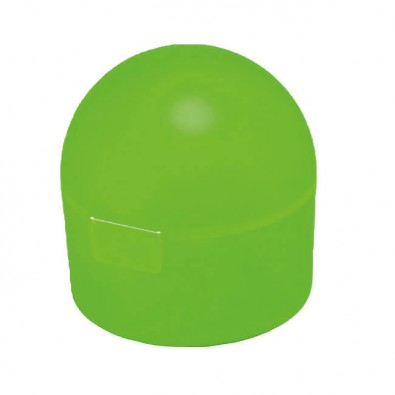 Obst-/Snack-Dose Apfelgrün